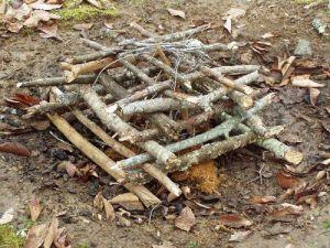 Log Cabin Campfire