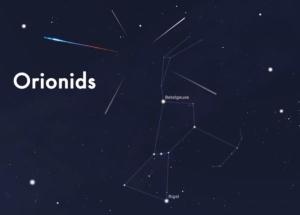orionids